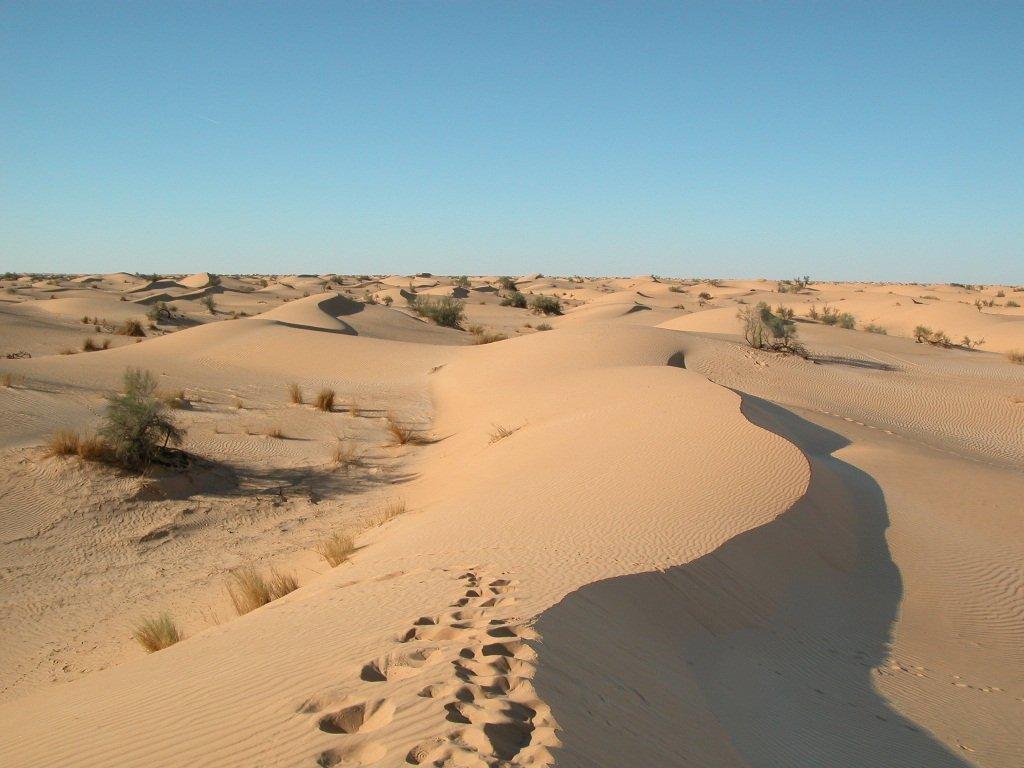 Algérie 13 (8)